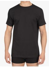 Alan Red T-shirt Derby Regular Fit Thin O-Neck
